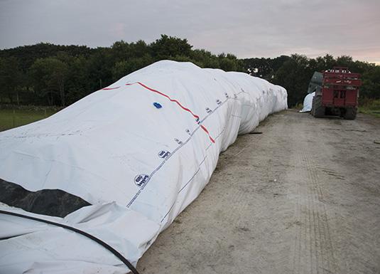 Silobagging, grovfôr i plastikkpølse