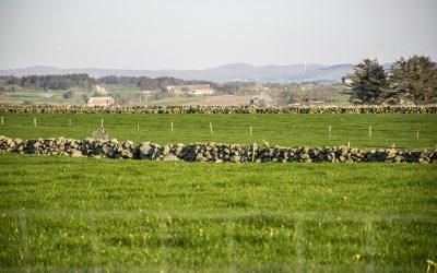 Ny landbruksmelding