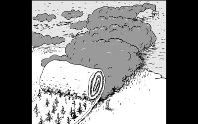 Blir Rogaland klimaskogfylket?
