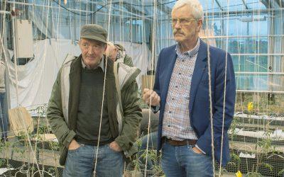 Treng meir økologisk matproduksjon i Norge
