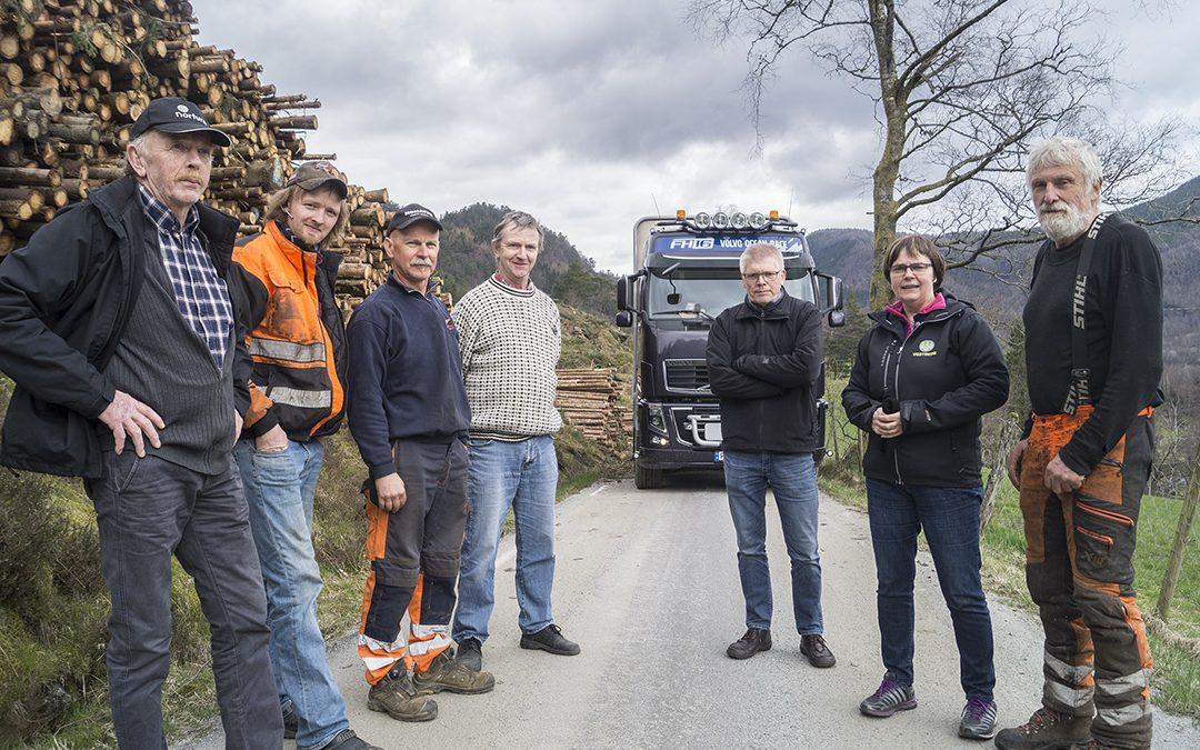 Fylkesvegnettet hindrar effektiv skogsdrift