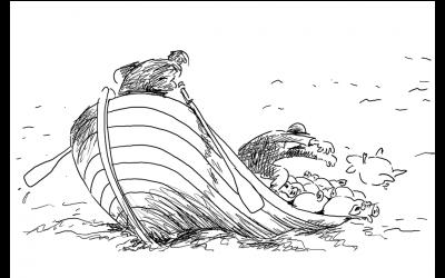 Alvor i svinenæringa