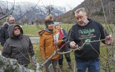 Blir agroteknikarar i økologisk landbruk