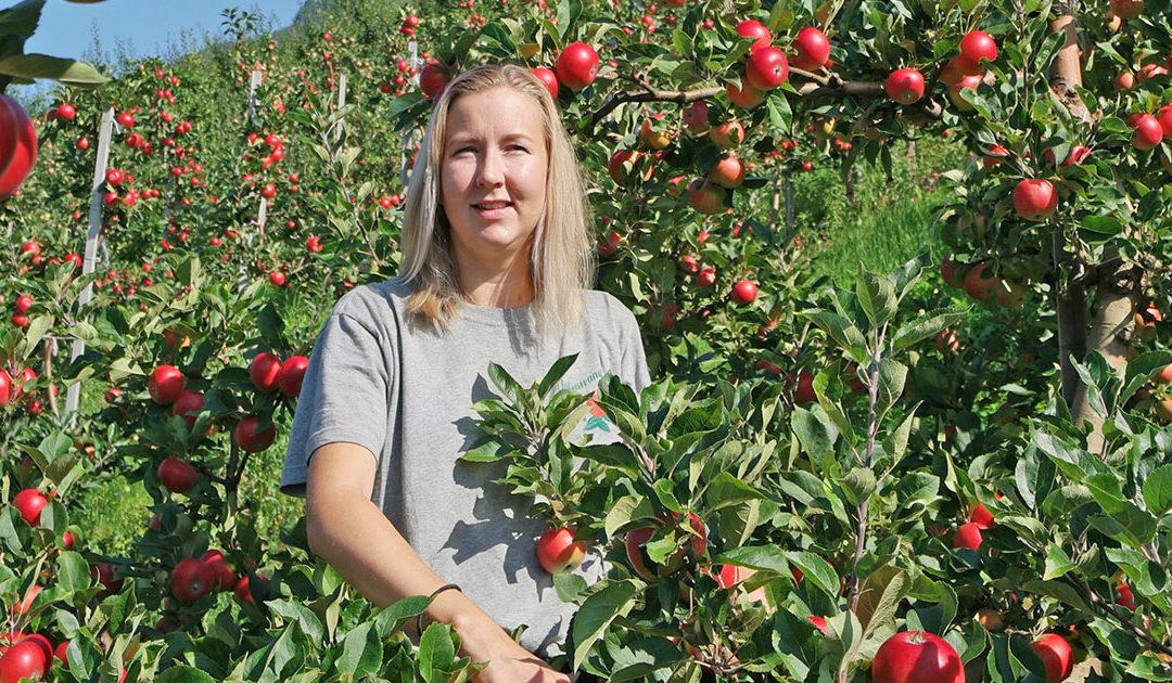 Vil berga eple, jordbær og potet